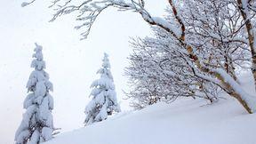 【私人定制】长白山 万达小镇双飞4晚5天半自助【北京起止,专车专导,泡汤滑雪,观天池,看雾凇】