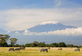 坦桑尼亚 乞力马扎罗的雪