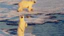 北极三岛 斯瓦尔巴群岛&格陵兰岛&冰岛15晚17天私享游