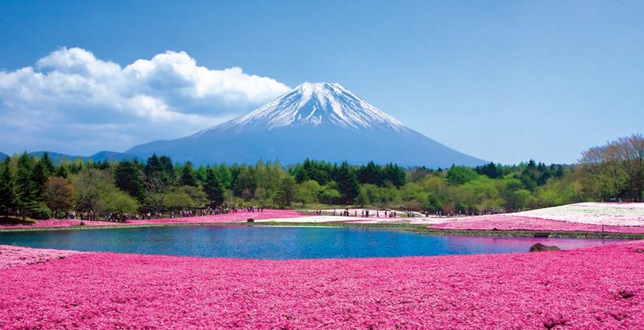 日本 重大疾病筛查