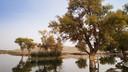 【坐着火车游新疆】走进南疆-罗布人村寨天山大峡谷帕米尔高原卡拉库里湖7日游