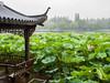 南京跟团游