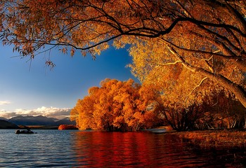 新西兰南岛金秋的光与影