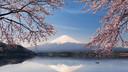 富士山跟團游