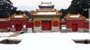 中國跟團游