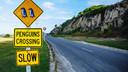 【巅峰揽胜】新西兰一地南岛+北岛冰川深度12日cx【升级一晚五星级酒店+库克山冰川直升机+米佛峡湾升级君王号】