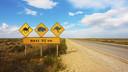 澳大利亚跟团游