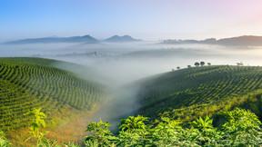 【私家团 向往的自然】云南西双版纳一地5日游【勐远仙境特色体验穿越雨林或飞拉达+入住星空帐篷+一价全含+真正纯玩无购物】