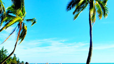 【艇进】三亚双飞5日游【国航直飞/全程网评五钻海边酒店/纯玩无购物】