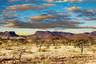 納米比亞12日游【辛巴紅泥人部落/鯨灣出海/蘇絲斯黎紅色沙漠】
