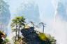 【漫品芳華】長沙/張家界/天門山玻璃棧道/大峽谷玻璃橋/芙蓉鎮/鳳凰古城雙高6日