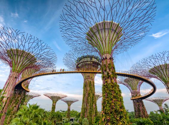 【醉美滨海湾】新加坡经典四钻5晚6天自由行【半岛怡东酒店/可升级金沙/赠送滨海湾花园门票】