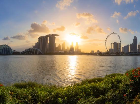 【明星喜来登】新加坡经典五星4晚6天百变自由行【喜来登乌节路/可增订动物园+滨海湾花园+鸭子船门票】