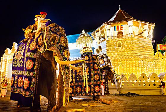 臻享斯里兰卡6晚8日游(北京斯航直飞)住茶园,含霍顿平原,大象孤儿院,狮子岩,佛牙寺等,蜜月增值好礼,网红双火车