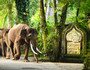 【宝贝计划】巴厘岛5晚7天半自助【全程专属车导/国际海边五星/大象公园/亲子SPA】