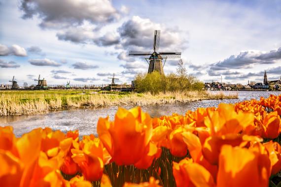 【荷兰赏花踏青】荷兰比利时德国10日游【库肯霍夫/风车村/汉莎直飞/羊角村木船】