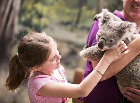 【深度畅游】  澳大利亚 8天 经典之旅  【上海起止/全程4星/南航往返/悉尼歌剧院】