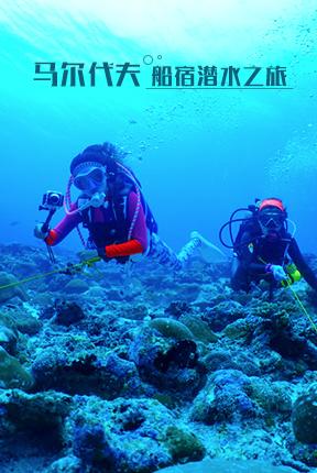 马尔代夫船宿潜水之旅